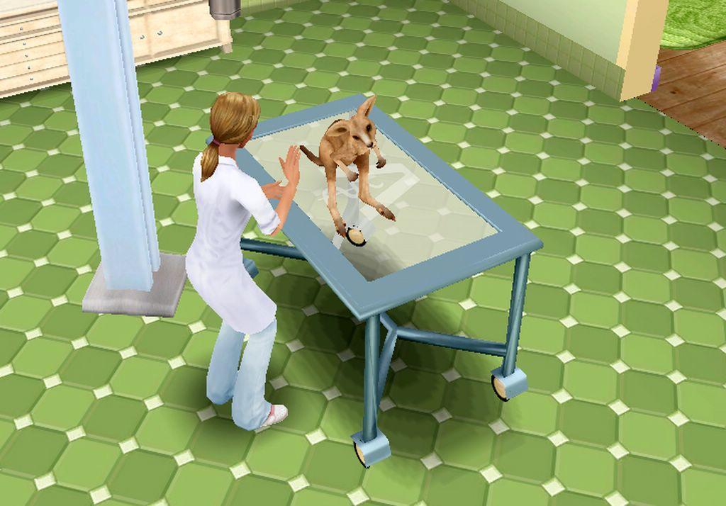 Pet Vet 3d Animal Hospital Down Under Review Gaming Nexus