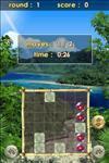Zenses Rainforest