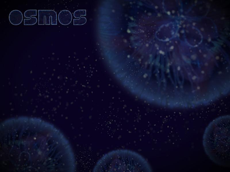 Osmos Interview